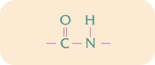 Kemisk struktur af en amidgruppe