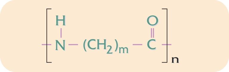 Kemisk sammensætning af PA6, PA11 og PA12, hvor m er henholdsvis 5, 10 og 11