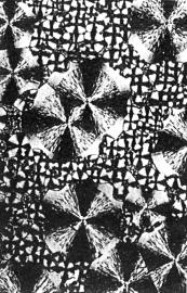 Sfærolitter i polymer