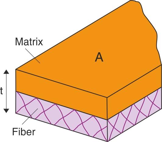 Skitse af matrix og fibre til brug ved beregning af sammenhæng mellem arealvægt af fibre, lagtykkelse og volumenandel af fibre.