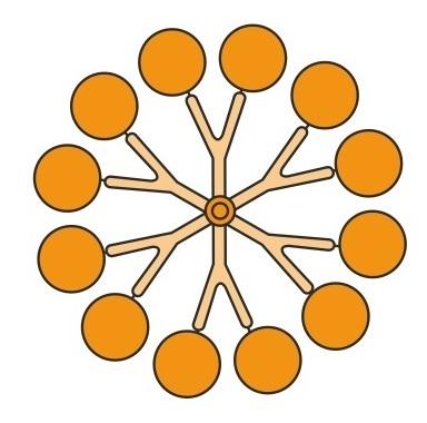 12-styksfordelerkanal, hvor indløbspunkterne er  arrangeret i samme afstand fra formens centrum