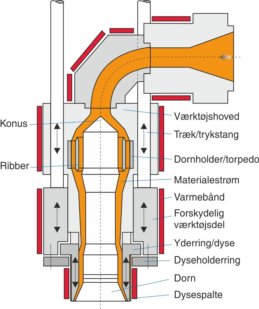 Bundfødt slangehoved med dornholder, mange steder også kaldet torpedo