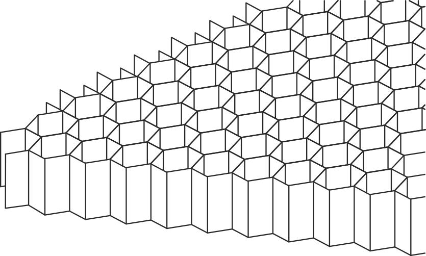 Bikagestrukturen i honeycomb